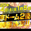 過去の2DAYS興行を踏まえて検討する東京ドーム2DAYS計画