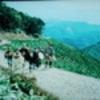 時代劇のロケ地「谷山林道」