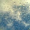 そろそろ梅雨に入ります。