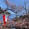 タニワキ日記(3月11日)
