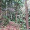 ◆11/12         晩秋の温海嶽へ②…遊歩道入口~二ノ滝