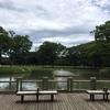 代々木公園・明治神宮・ポニー公園ルーティーンが完成する