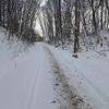 雪上ランニングしてきました。