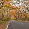🍁那須高原の紅葉🍁