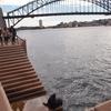 オーストラリア旅「シドニーと弾丸エアーズロックの旅!旅のおわりに」