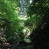 高尾山登山コース・6号路(びわ滝コース)