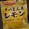 【皮】そのまんまレモン、おいしい