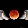 月食の始まりは20時48分ごろ。写経をしながら宇宙の不思議を体験しませんか?