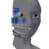 人の頭をつくる 外皮部の再設計
