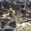和歌山県古座川の虫食岩までツーリング