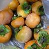 柿、鯛の塩釜 網焼鶏肉