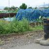 農作業におすすめの長靴を紹介する。
