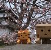 松前城 桜の季節の松前城天守閣