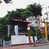 【高知情報】鳥(鶏)が好きなら高知大神宮に行ってみよう!
