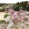 日本三名園って何?