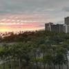 新婚旅行で初めてハワイに行って感じたこと・気づいたこと・日本との違い