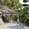 藤森神社の桜。見頃や開花状況。
