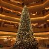 エミレーツパレスでクリスマスツリーを賞でる