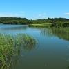 笹平池(福島県須賀川)