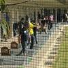 2020-11-15  ゴルフ練習風景