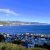 【観光】静岡県熱海市網代(2.16-17):静かな港町へ。霧と雨、朝日と散歩、樹と梅の2日間。