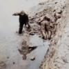 1945年6月8日 『地域で異なる沖縄戦』
