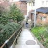 散歩日和の 春のベーグルと、夕ごはん