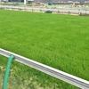 読む競馬(5)エアグルーヴとビワハイジが切り拓いた牝馬の未来 1996年・チューリップ賞