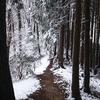 雪山に行かず、クロスバイクで近所を散歩