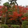 岡山旅行~雨の倉敷