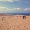 【一日一枚写真】鳥取砂丘 Part.3【スマホ】