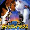 映画「キャッツ&ドッグス」猫派にはツマラナイ?あらすじ、感想、ねたばれあり。