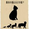 エッセイ漫画第63話『最初の猫とはどの猫?』