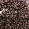 発達障害とカフェインの関係性