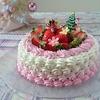 半年記念  (*^▽^)/★*☆♪  グラデーション…クリスマスケーキ♪♪♪