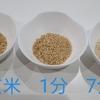 玄米、分づき米、精米のメリットデメリット☆美味しさ重視?健康重視?