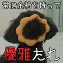 Taka's blog