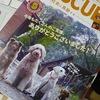 日本レスキュー協会。。。