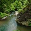 高時川源流 ①風景