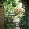 小さな庭で、たくましく育つもの