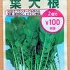 「葉大根」を水耕栽培しています。アオムシの食害を受けることなく、収穫できるでしょうか?