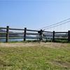 【ハネウマライダー】しまなみ海道日帰りサイクリング一人旅