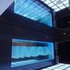 109シネマズ二子玉川の IMAX DIGITAL シアター