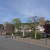 リューデスハイムに到着したら鴨の親子の引っ越しに遭遇した。【ライン下り①】