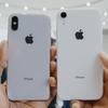 【動画レビュー】iPhone XR 全6色のカラーの違いを徹底比較!オススメの人気色も紹介