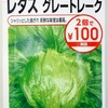 水耕栽培で「レタス」に挑戦中。一度苗を作ってから栽培装置で育てます