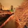 仕事帰りに寄れる都内の夜桜 ライトアップスポット 2017