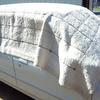 モノを所有することは管理の手間が増えるということ。天気のいい日にカーペットを車の上で洗って干した。