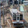 抜群の見晴らしと足元を走る電車。名古屋・向野橋はステキな撮影スポット!