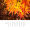 黄昏の 夕陽に染まる 秋の残り葉